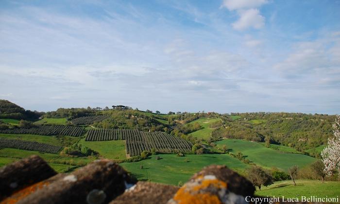 Celleno-Paesaggio ai piedi del borgo RCRLB