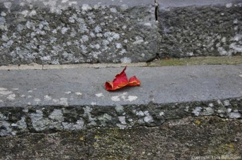 civita-di-bagnoregio-dettaglio-nel-borgo-1-rcrlb