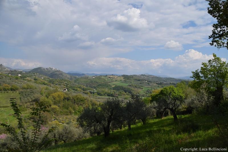 Valle del Farfa-Paesaggio fra Montopoli e Castel S. Pietro 3 RCRLB