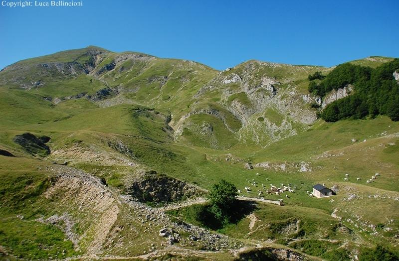 Mti Reatini-Mte di Cambio, paesaggio con Rifugio Maiolica 1 RCRLB.JPG