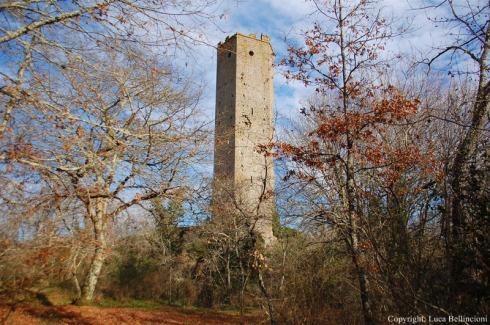 Castello di Chia-Veduta della torre 1 RCRLB.JPG